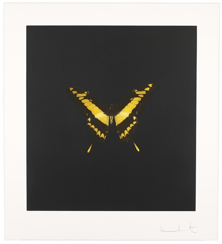 damien-hirst-the-souls-on-jacobs-ladder-take-their-flight-prints-and-multiples-photogravure-zoom_455_500