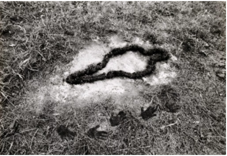 Ana Mendieta,《Untitled (Silueta Series)》,1978。图片:© Ana Mendieta, courtesy of the Guggenheim Museum