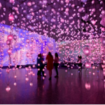 Pipilotti Rist, 《像素森林》(Pixel Forest),2016。图片:Museum of Fine Arts,Houston;© Pipilotti Rist
