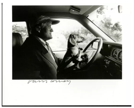 Ray Charles White,《在洛杉矶大卫·霍克尼驾车时抱着斯坦利 》(David Hockney and His Dog Stanley Driving in LA Signed by David Hockney),1989。图片:artnet价格数据库